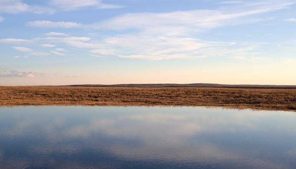 leeg-landschap